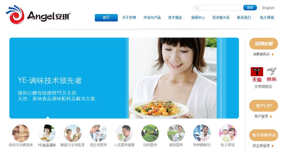 公司新官方网站正式启用
