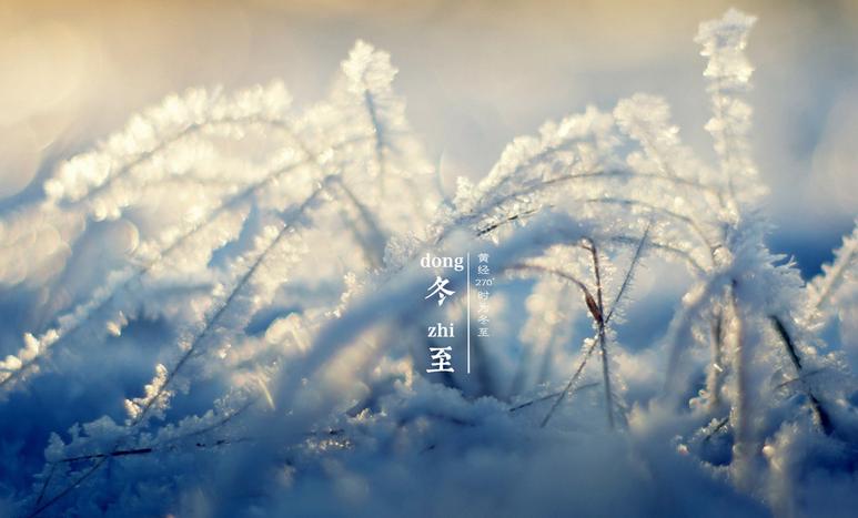 冬至时节相关农事指南