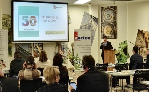 安琪在波兰举行YE技术交流会