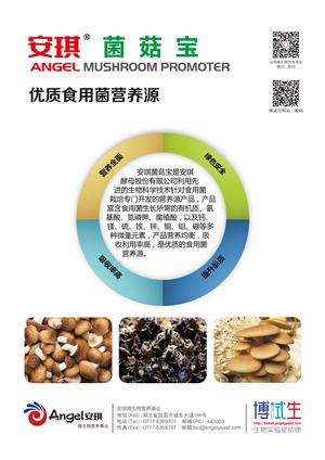 安琪新品菌菇宝亮相2015中国·香菇节