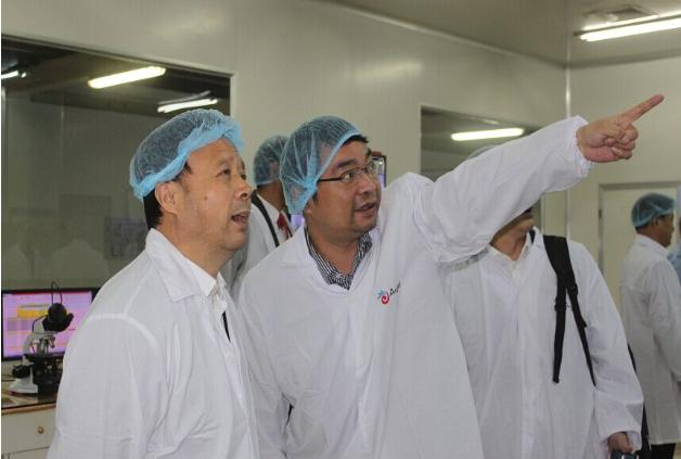 湖北省商务厅厅长卢焱群考察埃及公司