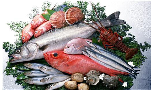 蛋白酶在水产品加工中的应用