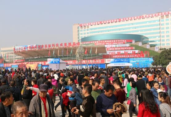 安琪福邦酵母源营养肥亮相西安杨凌农博会