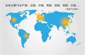 【全球酵母抽提物发展情况及趋势一】国内外现状