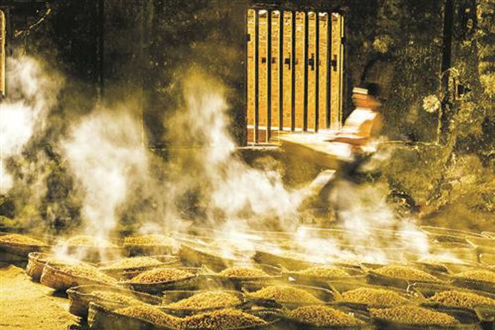【微课笔记】传统固态小曲白酒生产工艺——原料处理篇
