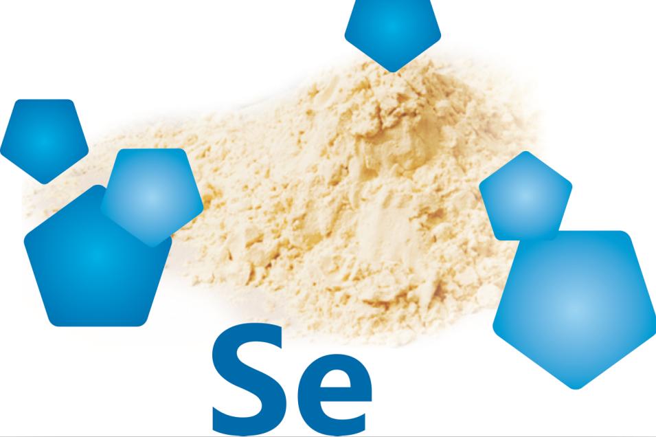 重磅!首次证实富硒酵母超高的生物利用度