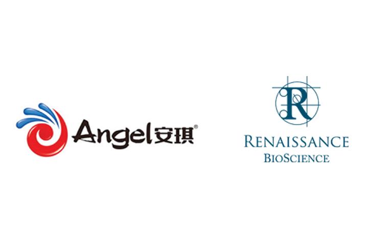安琪酵母股份有限公司与Renaissance Bioscience有限公司就葡萄酒等酵母菌签署全球独家许可协议