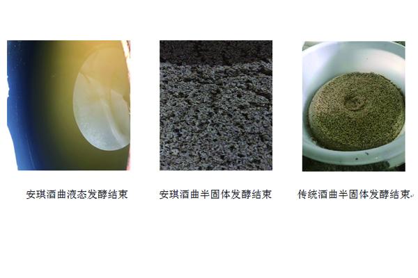 白酒曲与传统酒曲发酵的区别