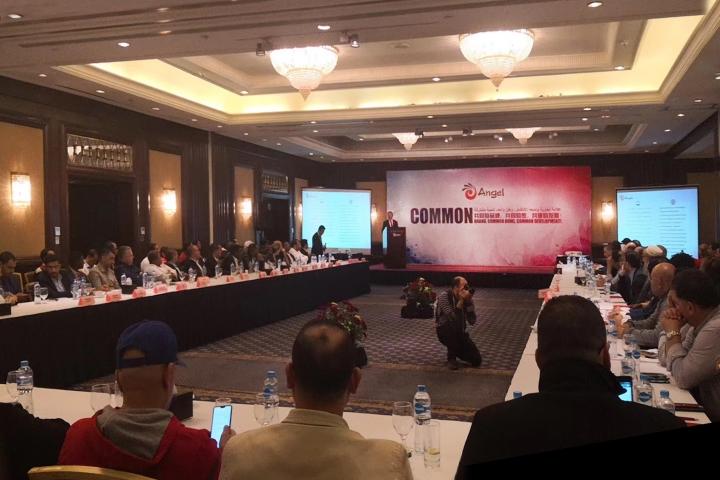 安琪埃及国际经销商会议举行