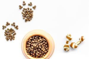 酶解宠物粮是个啥?