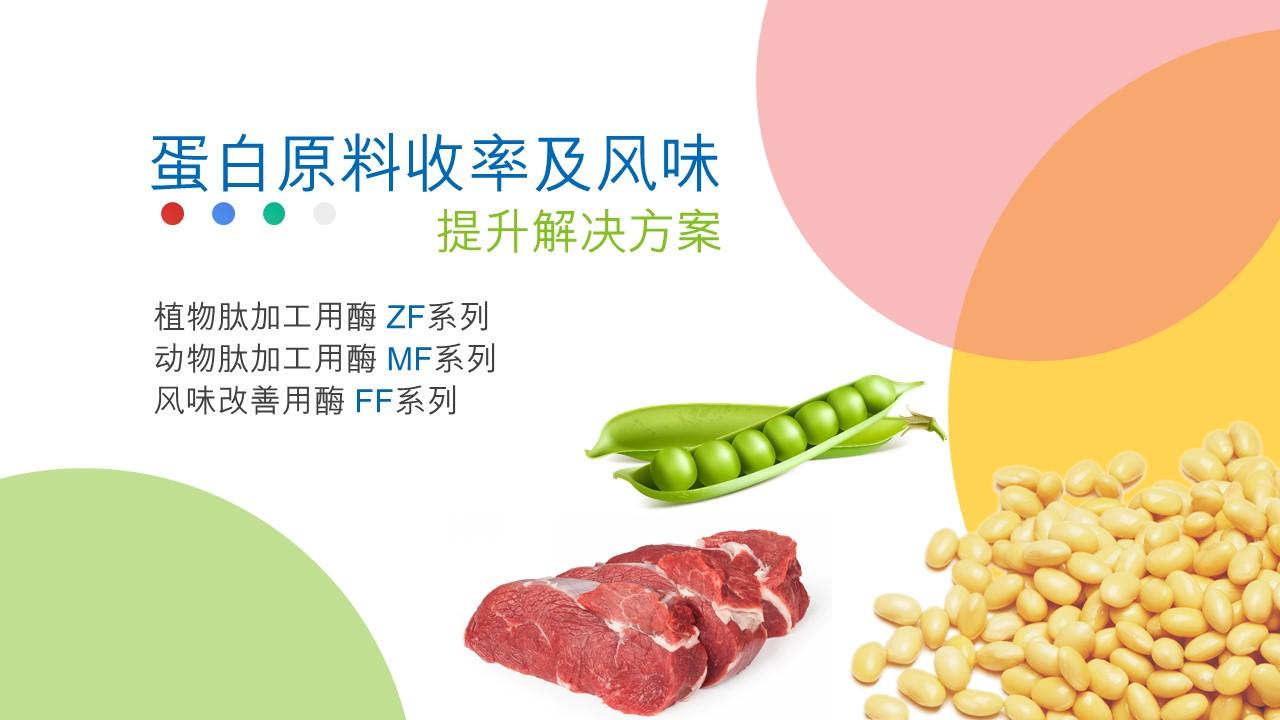 蛋白原料酶解