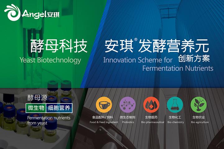 砥砺十年再起航,安琪开创全球发酵营养元新征程