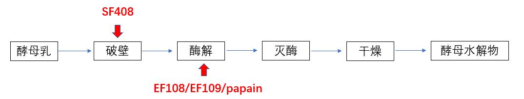 SF408在酵母水解物中的应用