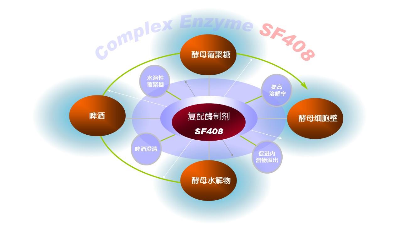 安占美复配酶制剂SF408的应用领域与功能