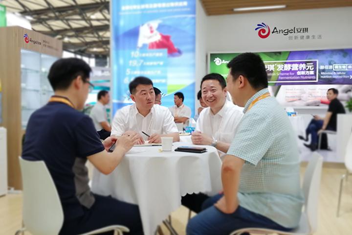 安琪閃亮CphI China 2019,加速拓(tuo)展生物(wu)醫藥市場
