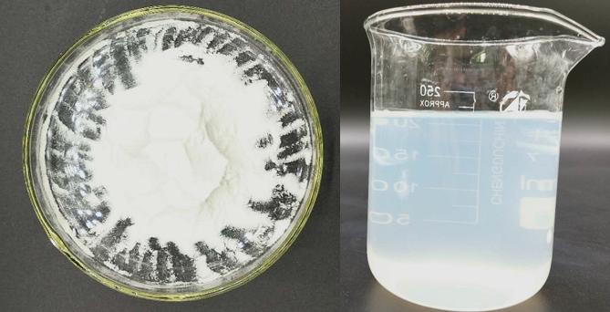 SF408在可溶性酵母葡聚糖中的应用
